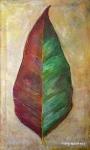 Gumleaf by Margo Humphries