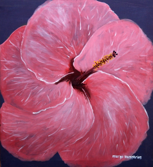 Hibiscus Flower by Margo Humphries