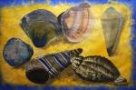 Sea Shells by Margo Humphries