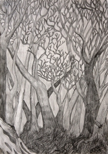 Trees by Margo Humphries