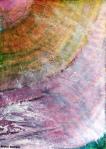 """""""Hidden"""" by Margo Humphries"""